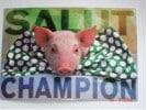 Salut_Champion_50_-88089